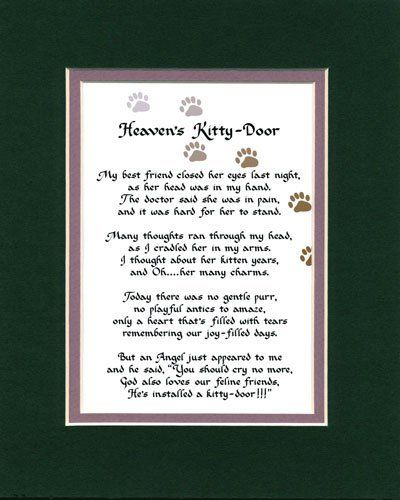 Pin By Terri Walston On Just Sayin Cat Heaven Cat Poems Cat Quotes