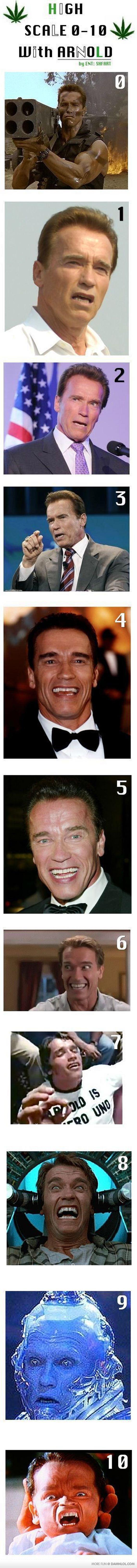 How High Are You? - Arnold Schwarzenegger