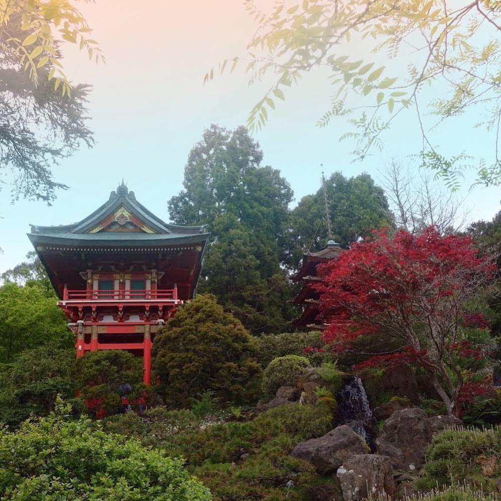 Japanese Tea Garden, San Francisco, CA