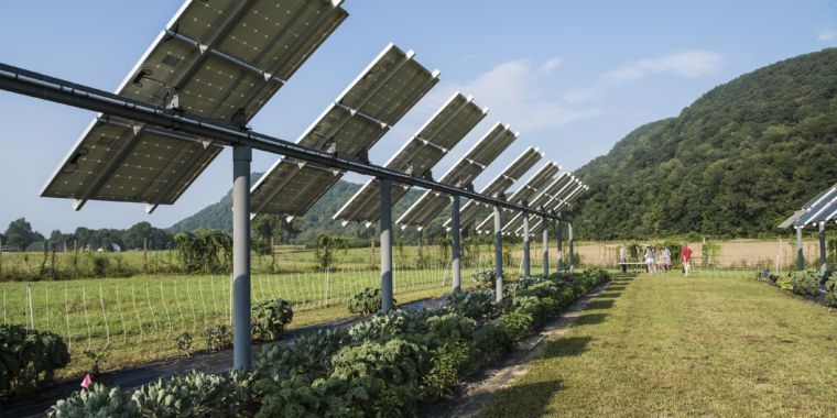 Crops Under Solar Panels Can Be A Win Win And In Dry Places Photovoltaic Shade Can Even Reduce Water Use Suggests New Study In Jo Solar Panels Solar Solar Farm