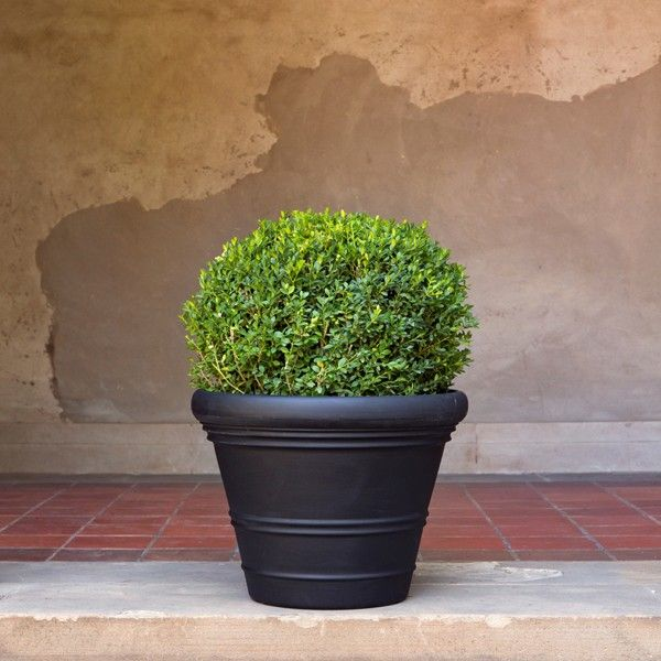 Veradek Marquis Collection RIVIERA Planter | Best selection of #Indoor #Planters for #Home & #Garden at allplanters.com
