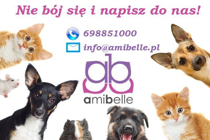 Jesli Potrzebujesz Porady Odnosnie Dobrania Odpowiednich Akcesoriow Napisz Do Nas My Nie Gryziemy W Ofercie Jednak Mamy Gryzaki Dla Nas Pet Life Photo Pets