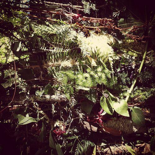 leaf weaving