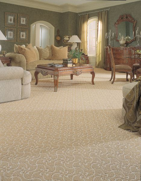 Astonishing White And Cream Carpet In Living Room Traditional Living Download Free Architecture Designs Scobabritishbridgeorg