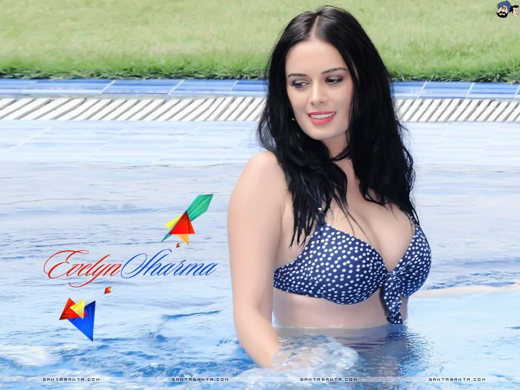 evelyn sharma wallpaper #71 | best cleavages | pinterest | wynn las