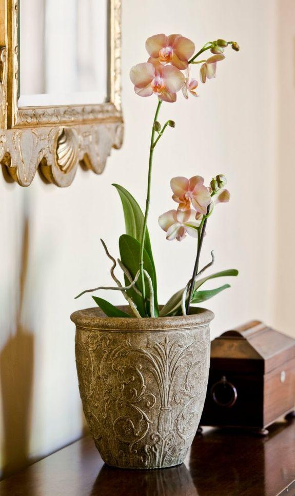 Lieblich Deko Mit Blumen Orchideen U2013 109 Frische Und Stilvolle Ideen #blumen  #frische #ideen