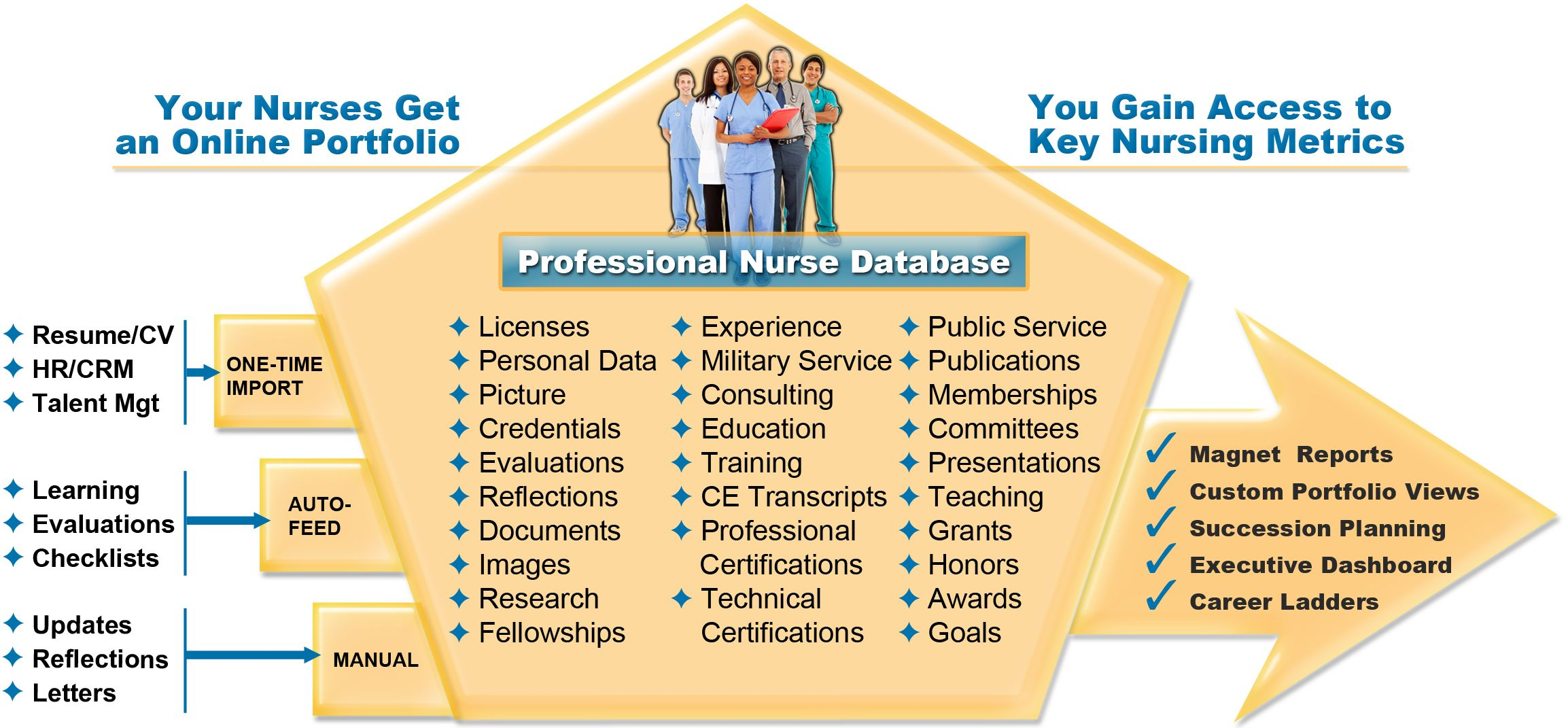 nursing professional portfolio template - professional nursing portfolio google search