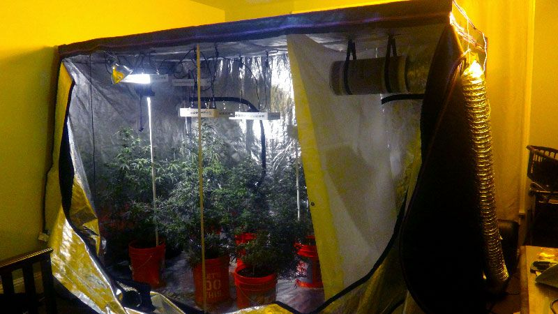 Grow tents are an ideal method to conveniently add an