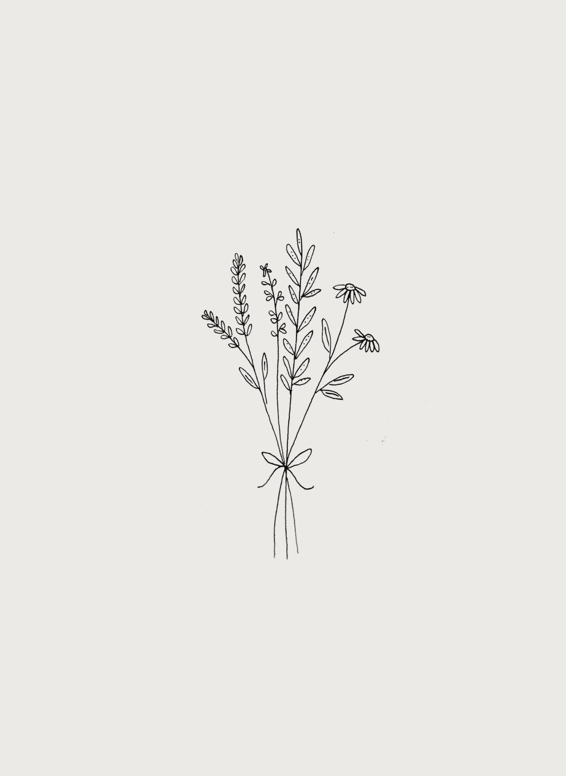 Botanical Wild Flower Bouquet Illustration By Ryn Frankgreat Pretty Wallpapers Botanical Bo Wildflower Tattoo Ryn Frank Flower Tattoos