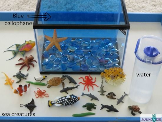 Make your own underwater zoo aquarium pretend play for Create your own fish