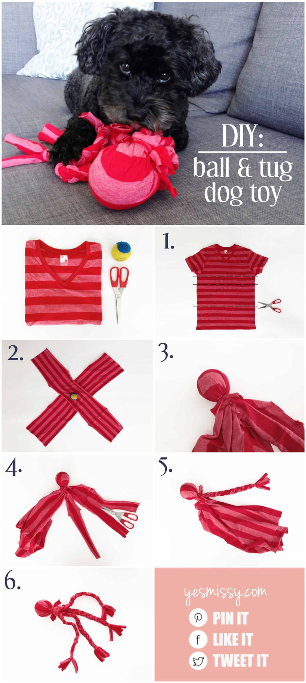Your dog will love this DIY tug toy!