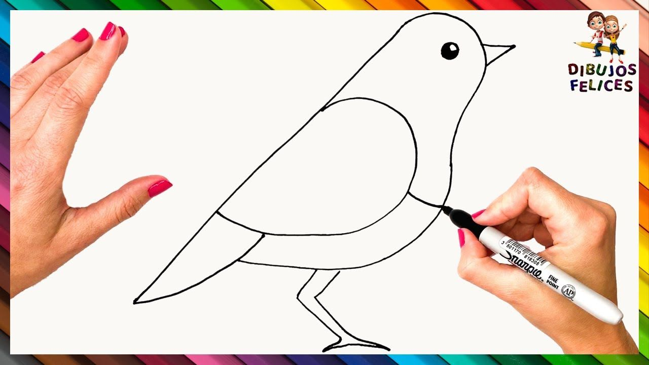 Como Dibujar Un Pajaro Paso A Paso Para Ninos Dibujo De Pajaro Facil Dibujos De Pajaro Como Dibujar Dibujos Para Ninos