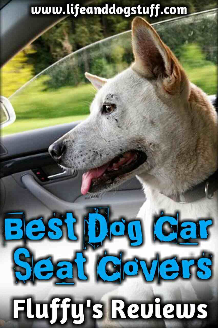5 best dog car seat covers for dog hair dog car seats