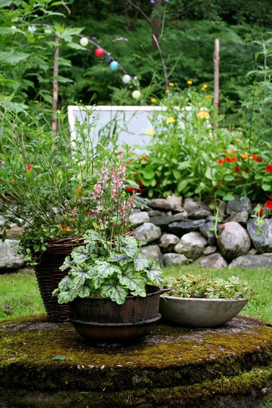 A view in my garden - Lindas trädgårdsblogg