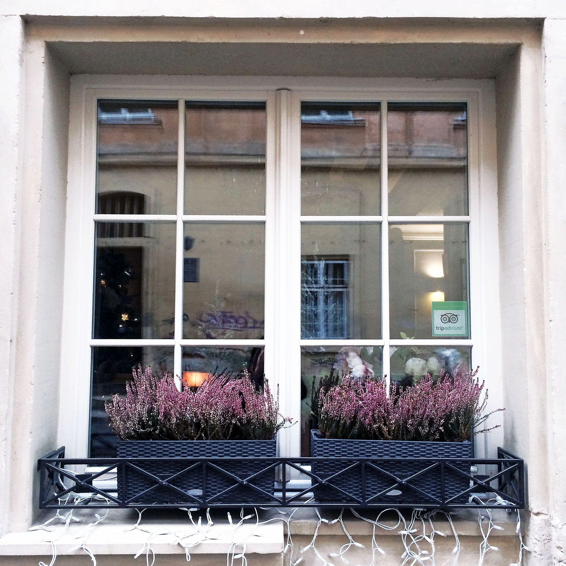 #window #Lviv