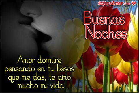 Hermosos Tulipanes Para Tu Reina Desear Buenas Noches Buenas
