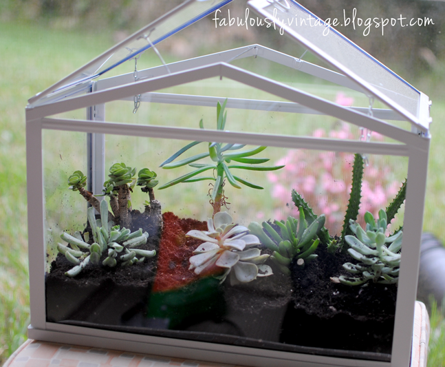 diy terrarium with succulents share your craft. Black Bedroom Furniture Sets. Home Design Ideas