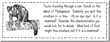 Types of Eaters Freebie (Interactive Science Notebook) - Creekside Teacher Tales