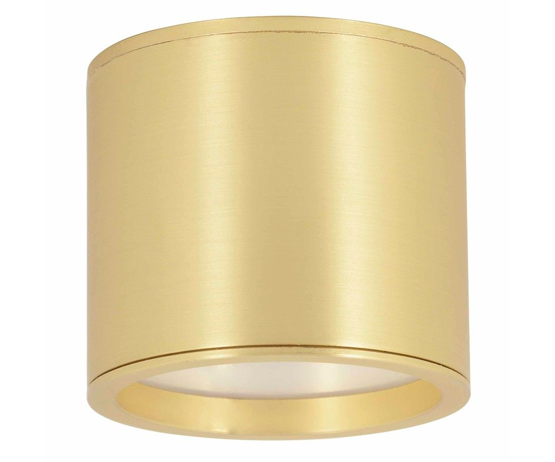Ledlux Surface 80mm Downlight In Brass Downlights Downlights Dimmable Led Lights Beacon Lighting