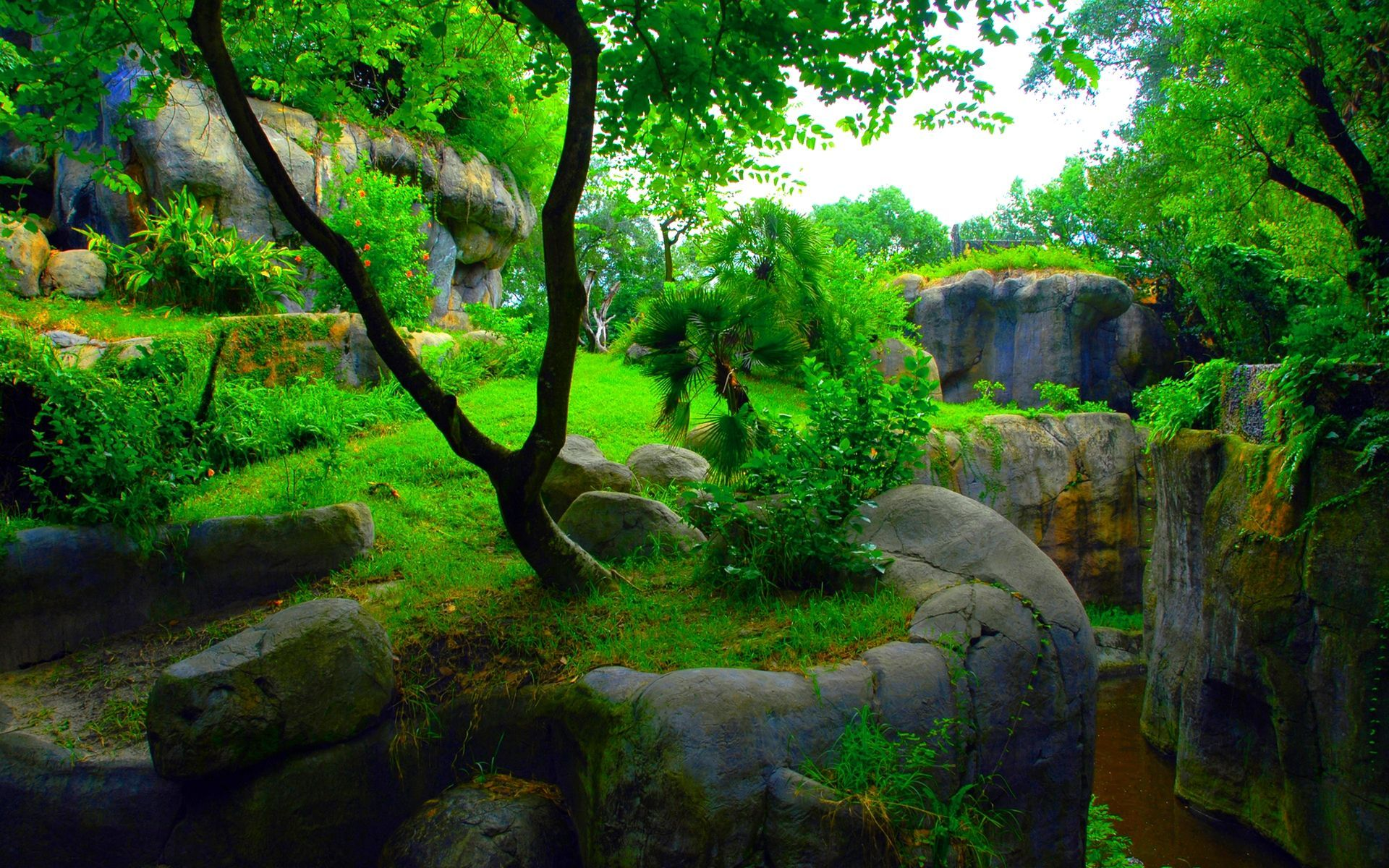 3d Nature Desktop Hd Wallpaper Nature Wallpaper Green Nature Wallpaper Wallpaper Pc