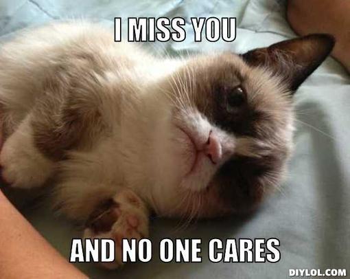 20 Super Cute Memes That Say I Miss You Sayingimages Com Funny Grumpy Cat Memes Grumpy Cat Grumpy Cat Humor