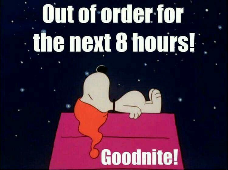 Pin by (845) 313-0261 on snoopy   Good night funny, Funny ...