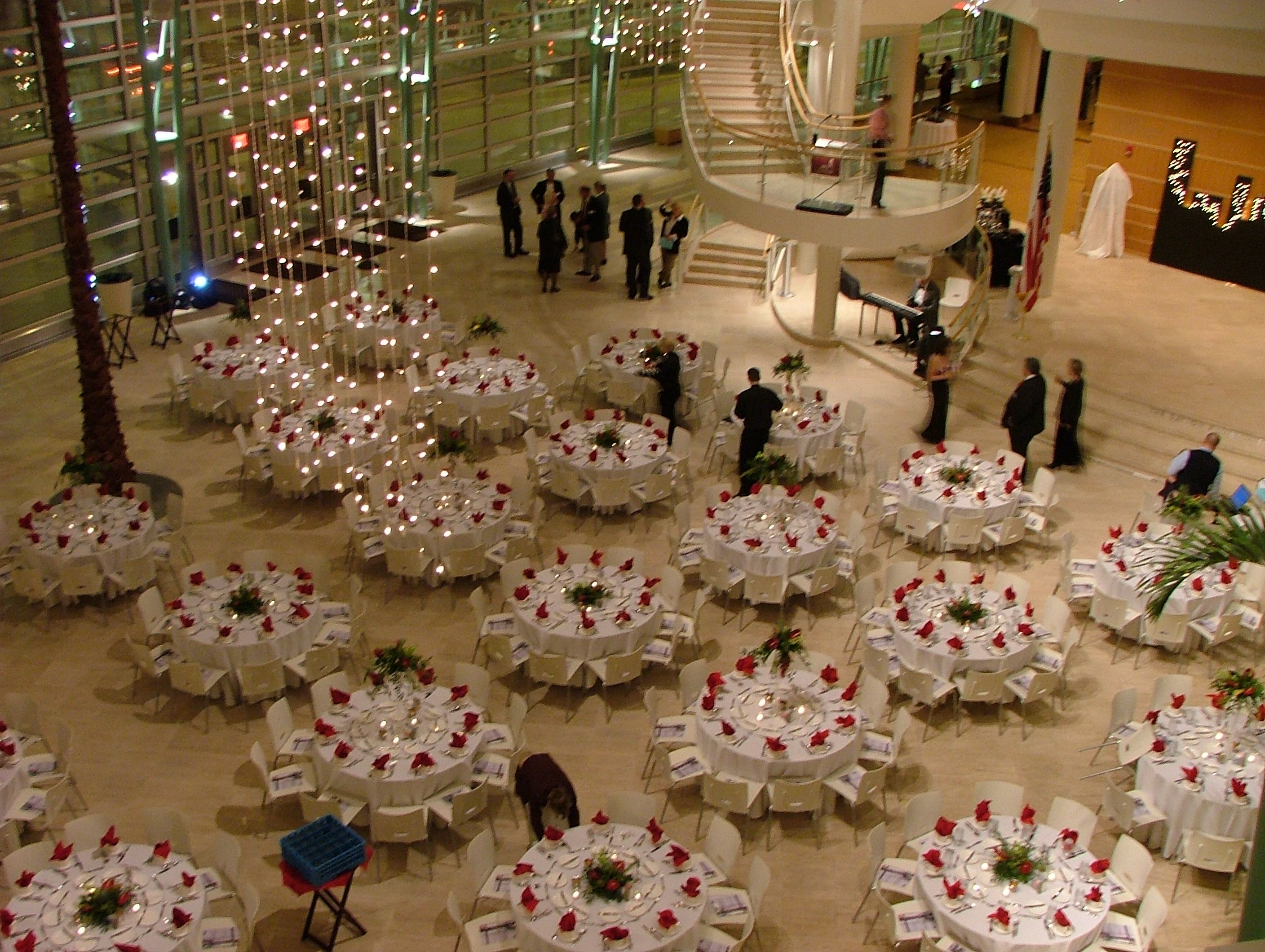 evening dinner in the wintergarden with holiday lights social