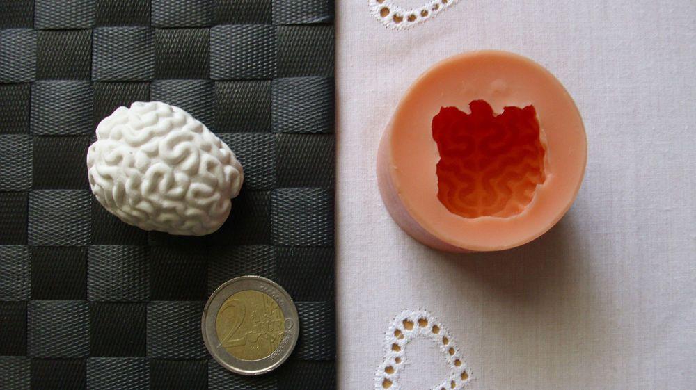 3D Silikon Backform Gehirn Hirn / Halloween / Marzipan ...