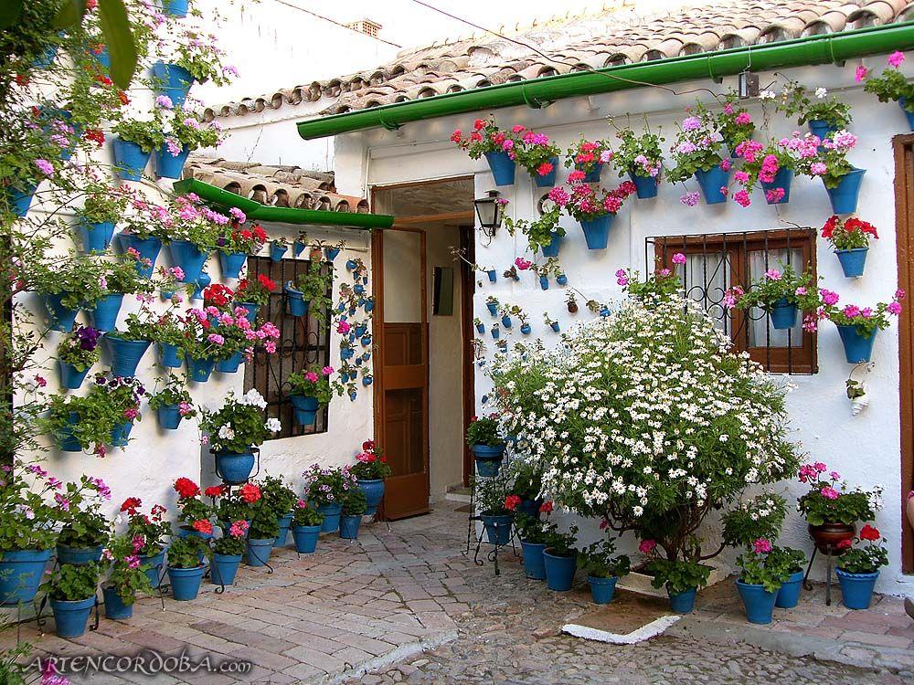 Arte Y Cultura De Córdoba Visitas Guiadas Patios Mexicanos Patios Cordobeses Contenedores De Jardín
