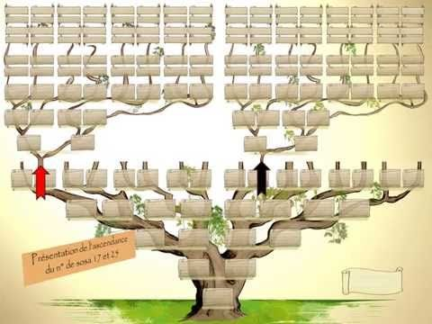 Presentation Generama Arbre Genealogique Vierge Arbre Genealogique Arbre Genealogique Gratuit