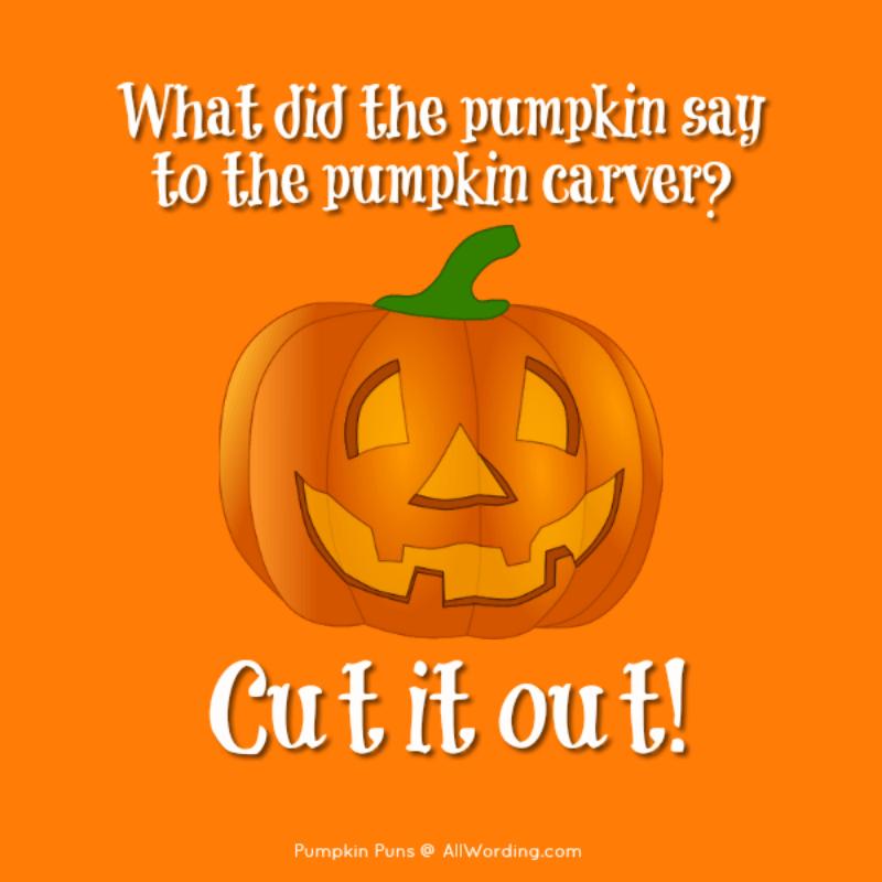 Pun Kins A Plump And Tasty List Of Pumpkin Puns Pumpkin Puns Pumpkin Quotes Funny Women Quotes
