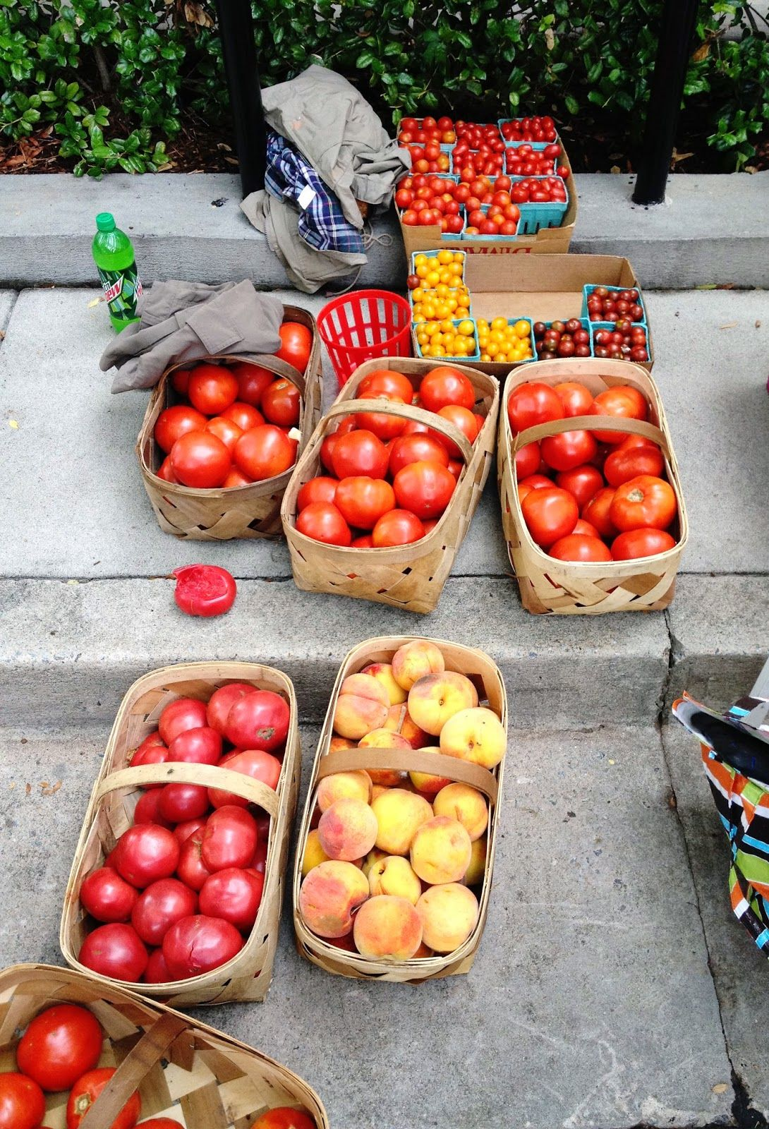 Saturday Farmers Market in Downtown Greenville, SC // Truly Unruly