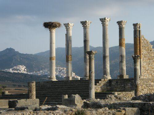 El templo de Júpiter Capitolino estaba dedicado a Júpiter Optimus Maximus, junto a las otras dos divinidades de la tríada capitolina: Juno y Minerva.