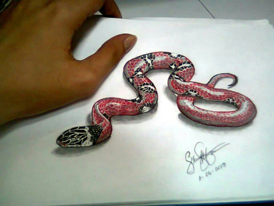 3d Snake Drawing Snake Drawing Drawings Beautiful Snakes