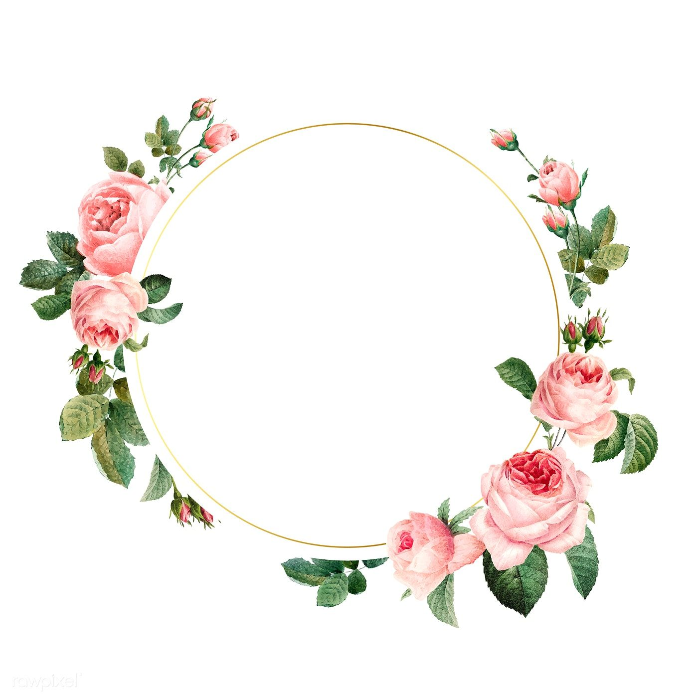 Blank round pink roses frame vector on white background