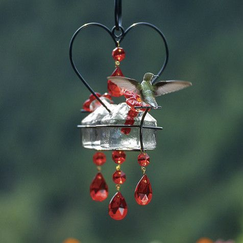 Search Roundup: Feeding hummingbirds | Glass hummingbird feeders, Humming bird feeders ...