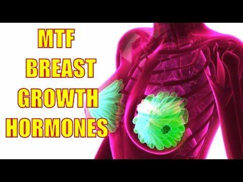 Transgender mtf breast growth opinion