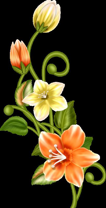 Pin by jannin on dessiner broderie aquarelle fleurs dessin - Fleur a dessiner ...