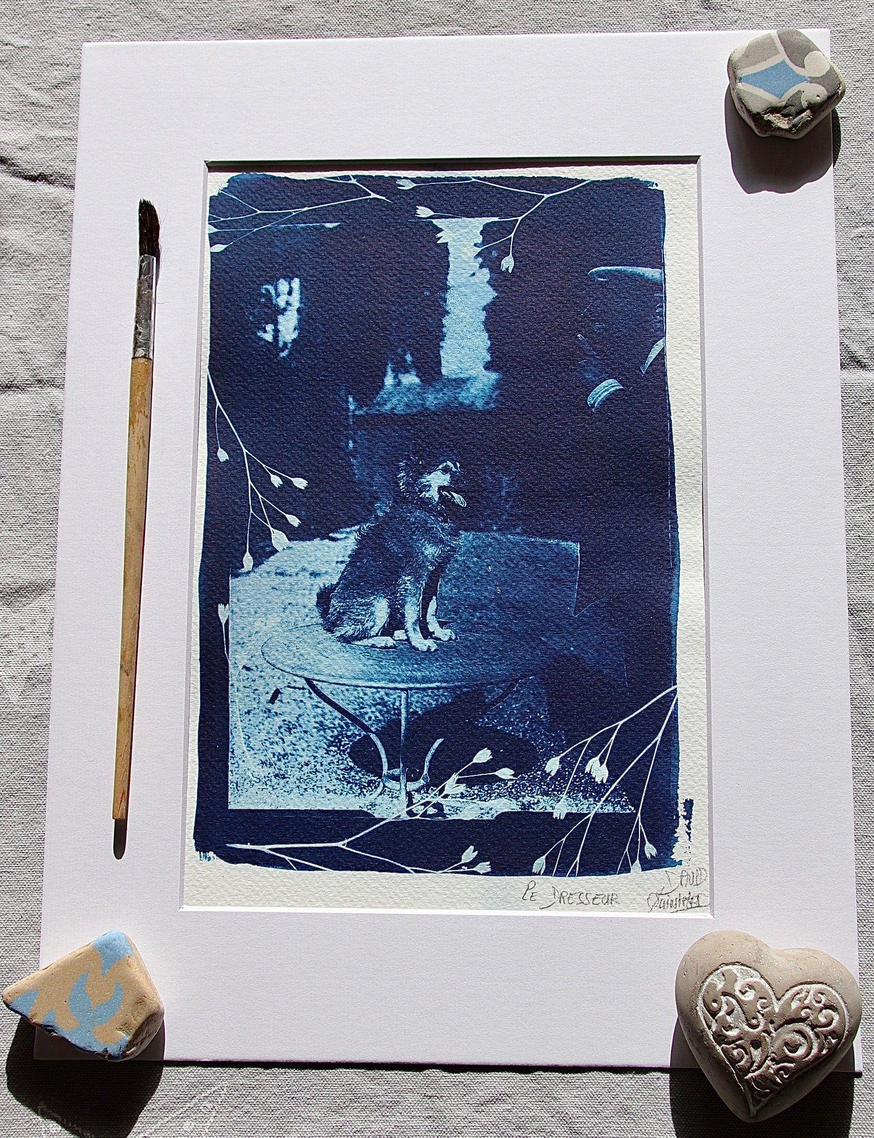 Cyanotype Original Le Dresseur Format A4 Papier Aquarelle
