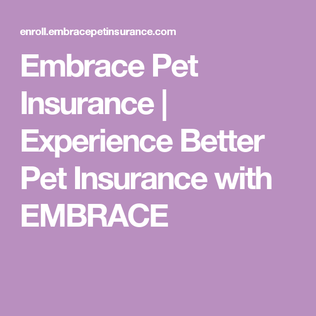 Embrace Pet Insurance Experience Better Pet Insurance With Embrace Embrace Pet Insurance Pet Insurance Pet Health Insurance