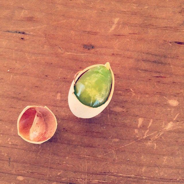 @natadecoco - Instagram:「銀杏姫。かわいいなや~」