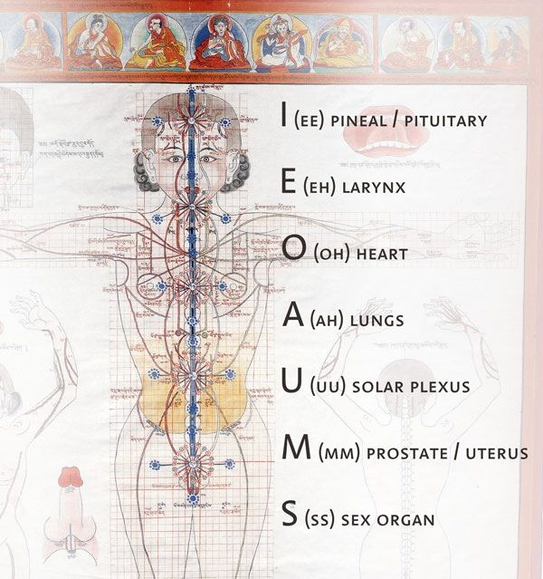 """In ancient times, the seven vowels of Nature I E O U A M S resounded within the human organism. But, when humanity came out of the ""Jinn"" lands, rhythm and harmony were lost.  Therefore, the human being must be aware of the urgent necessity for the seven vowels of Nature to vibrate once again within the organism; they must resound with intensity within the resonating internal chambers, as well as in each of the plexus or chakras of the Astral Body.""  - Samael Aun Weor"