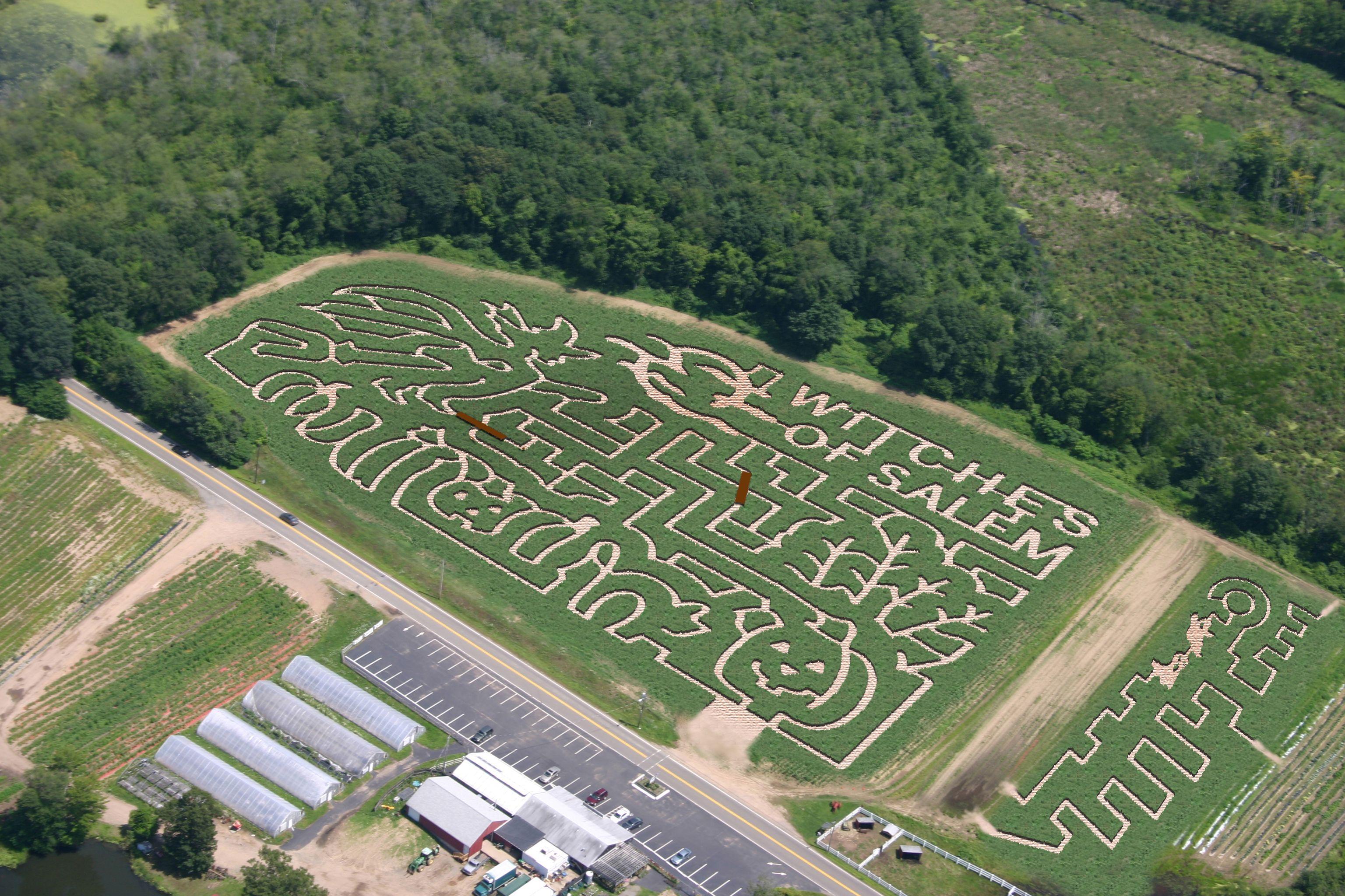 connors farm danvers ma corn maze salem massachusetts
