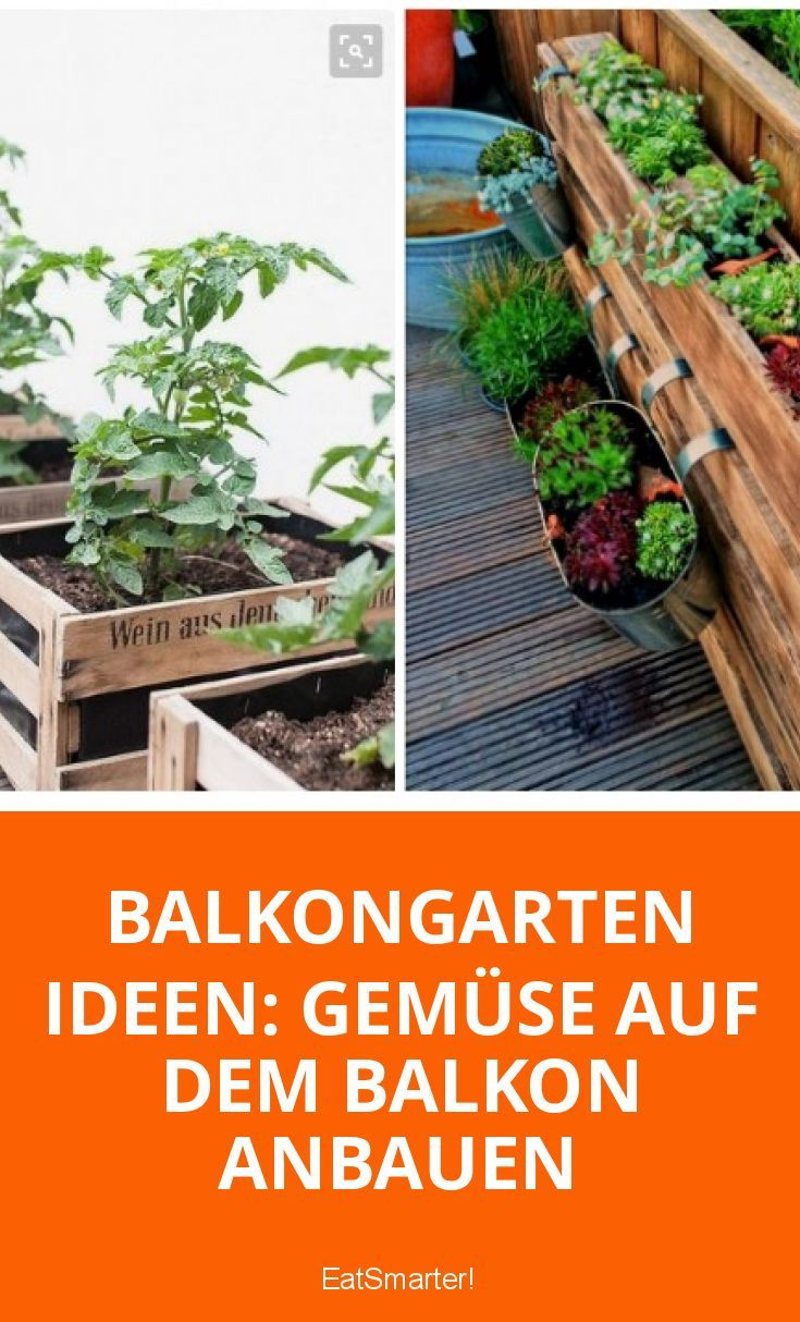 gem se auf dem balkon anbauen gr ne beete der gartenblog auf eat smarter pinterest. Black Bedroom Furniture Sets. Home Design Ideas