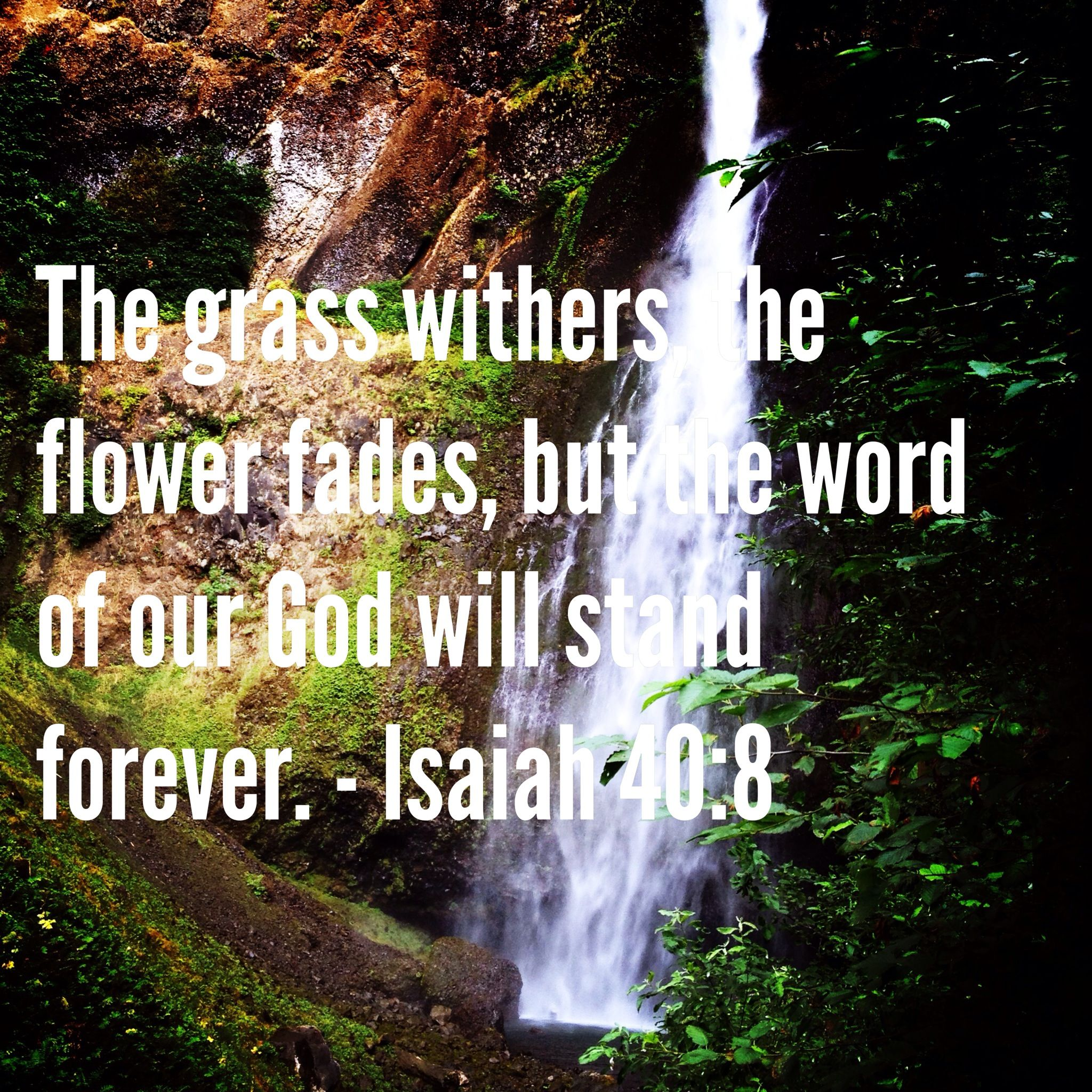 Isaiah 40 8 With Images