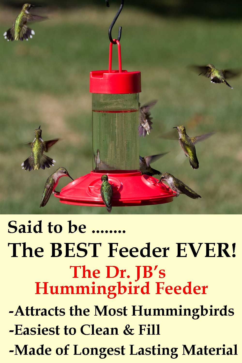 Dr JBs Red Hummingbird Feeder. Said to be the BEST