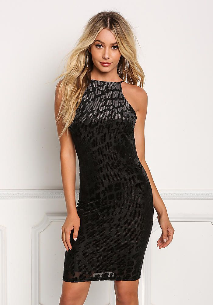 287a1fc4f Black Leopard Velvet Burnout Low Back Bodycon Dress - Halloween - Trends
