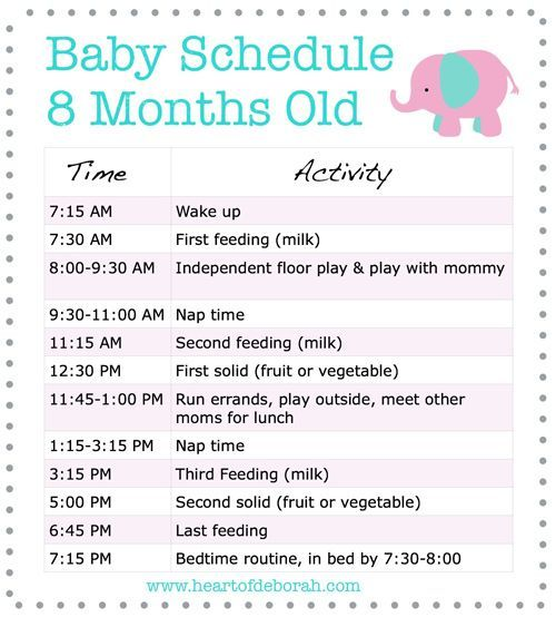 Daily Schedule 6 Month Old Baby (With images) | Baby ...