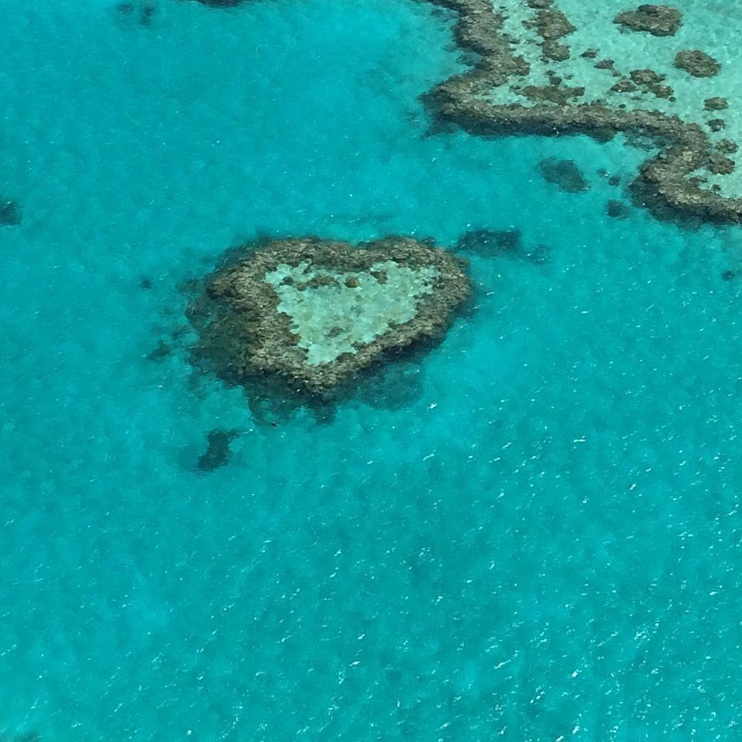 #greatbarrierreef #paradise #Australia by gabitrevisanb http://ift.tt/1UokkV2