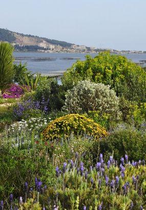 Floraisons printanières dans un jardin méditerranéen | Pinterest ...